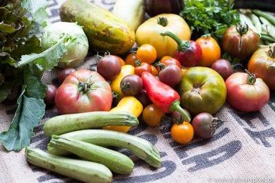 Waldgärtner CSA Gurken, Tomaten, Zucchini