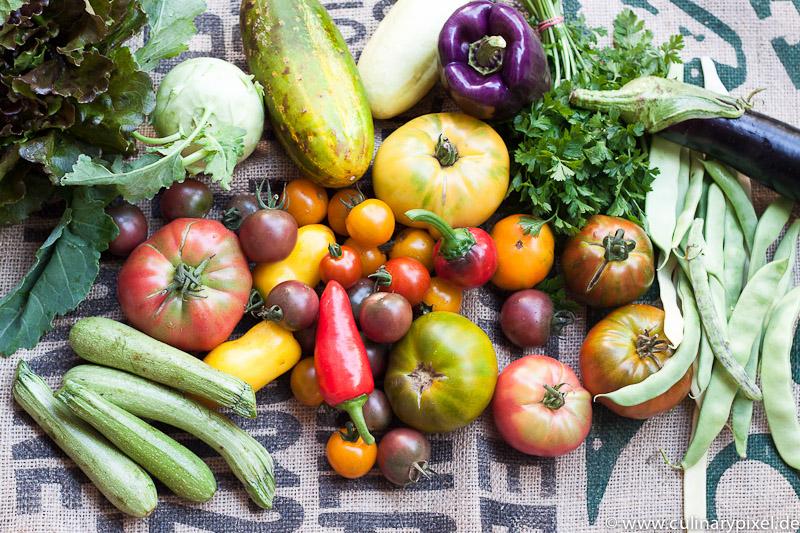 Bio Gemüse mit bunten Tomaten, Paprika & Gurken