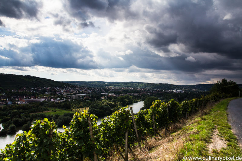 Weinberge Randersacker am Main