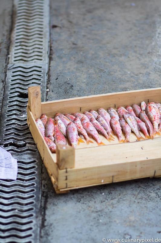 Fischkiste - Fischmarkt in Istanbul