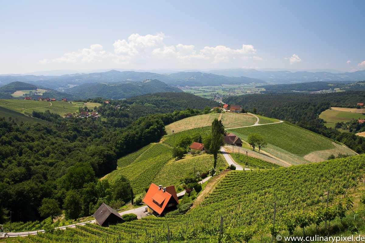 Weingut Wohlmuth Südsteiermark