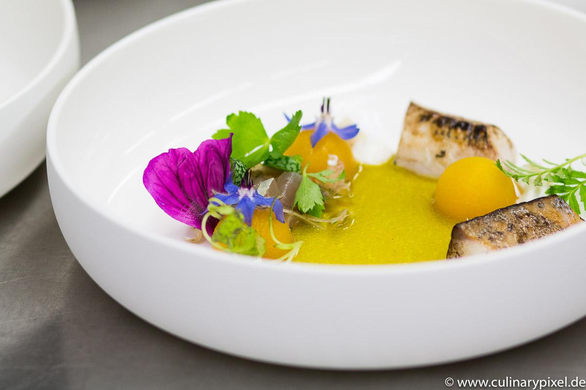 Tohru Nakamura: Makrele, Myoga, Muskatkürbis, Muschelvinaigrette mit Myrtel