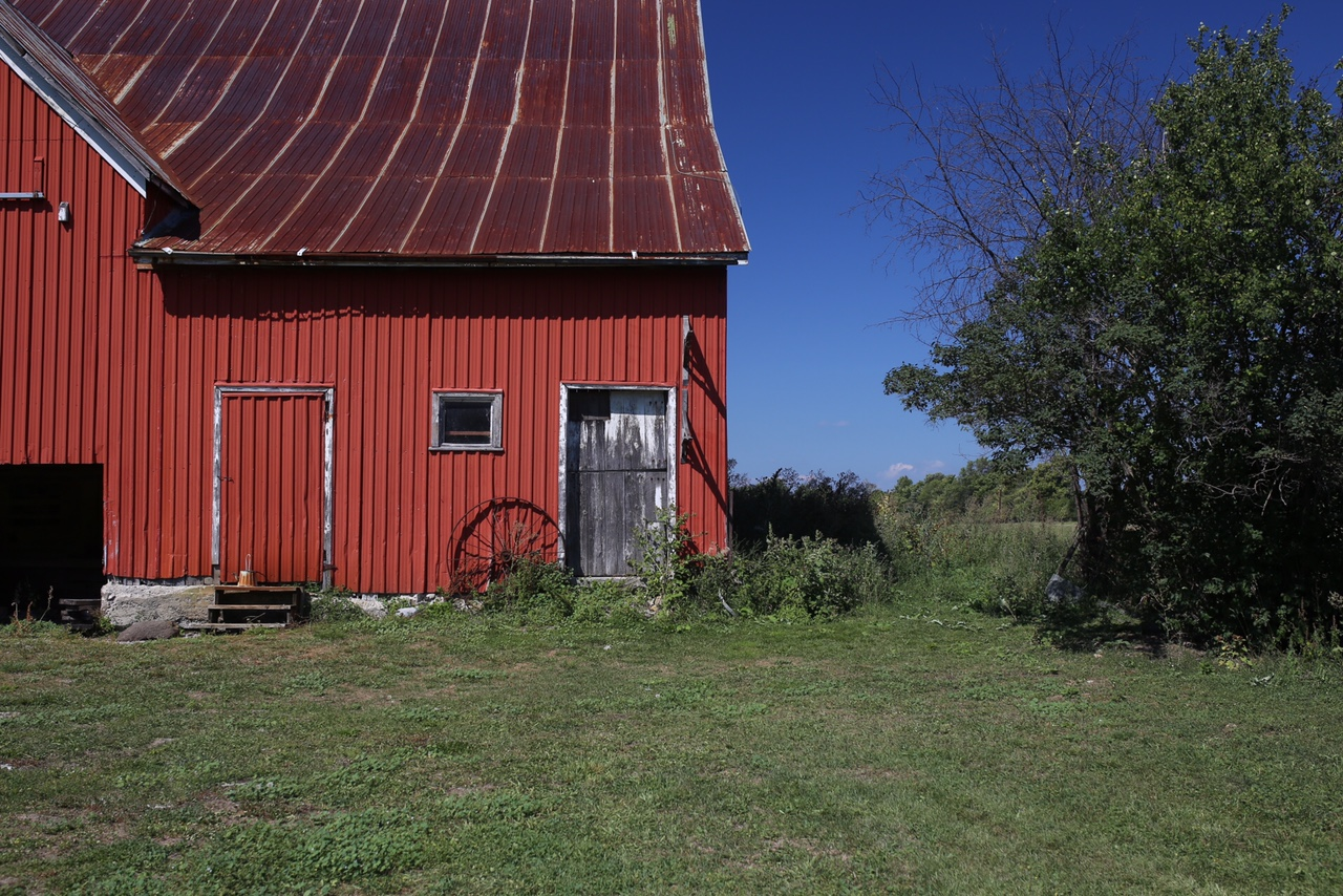 Farms Prince Edward County