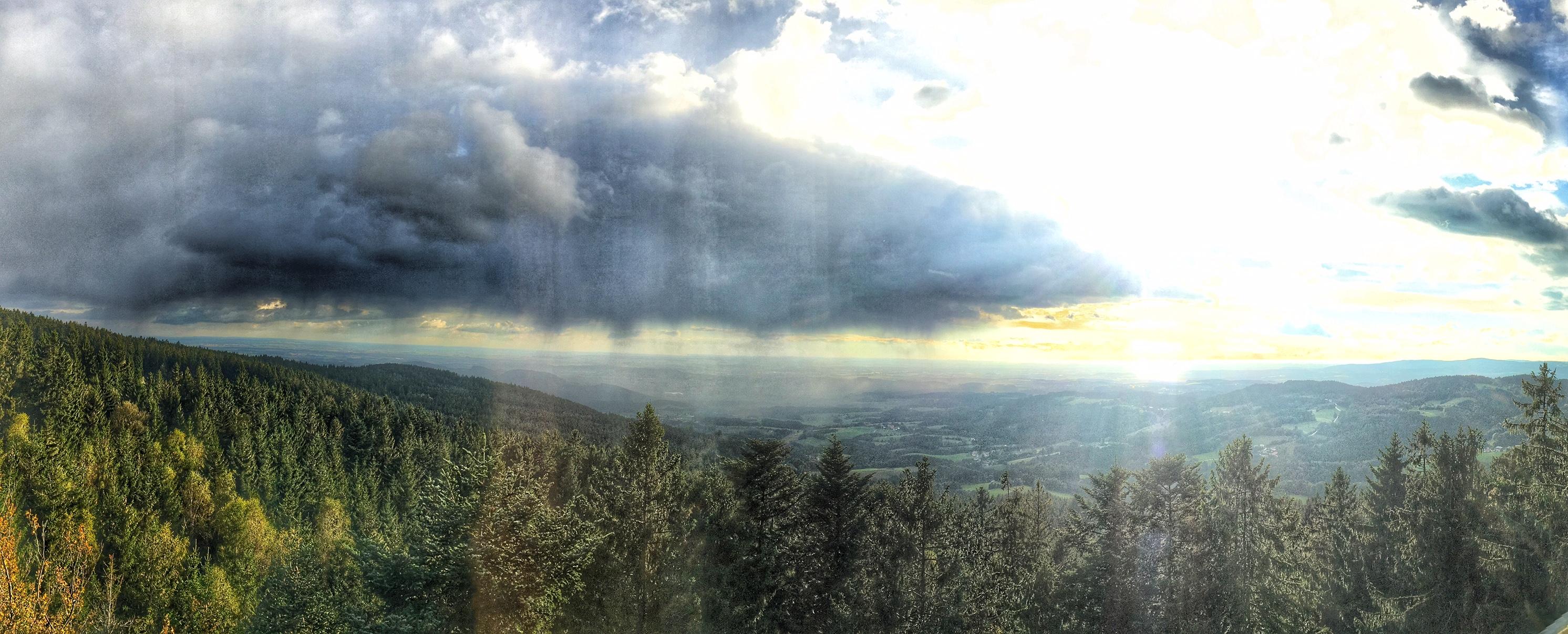 Bayerischer Wald Waldwipfelweg