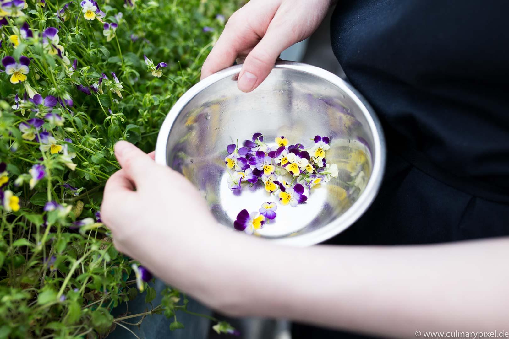 Tohru Nakamura Garden Table Geisels Werneckhof Blüten