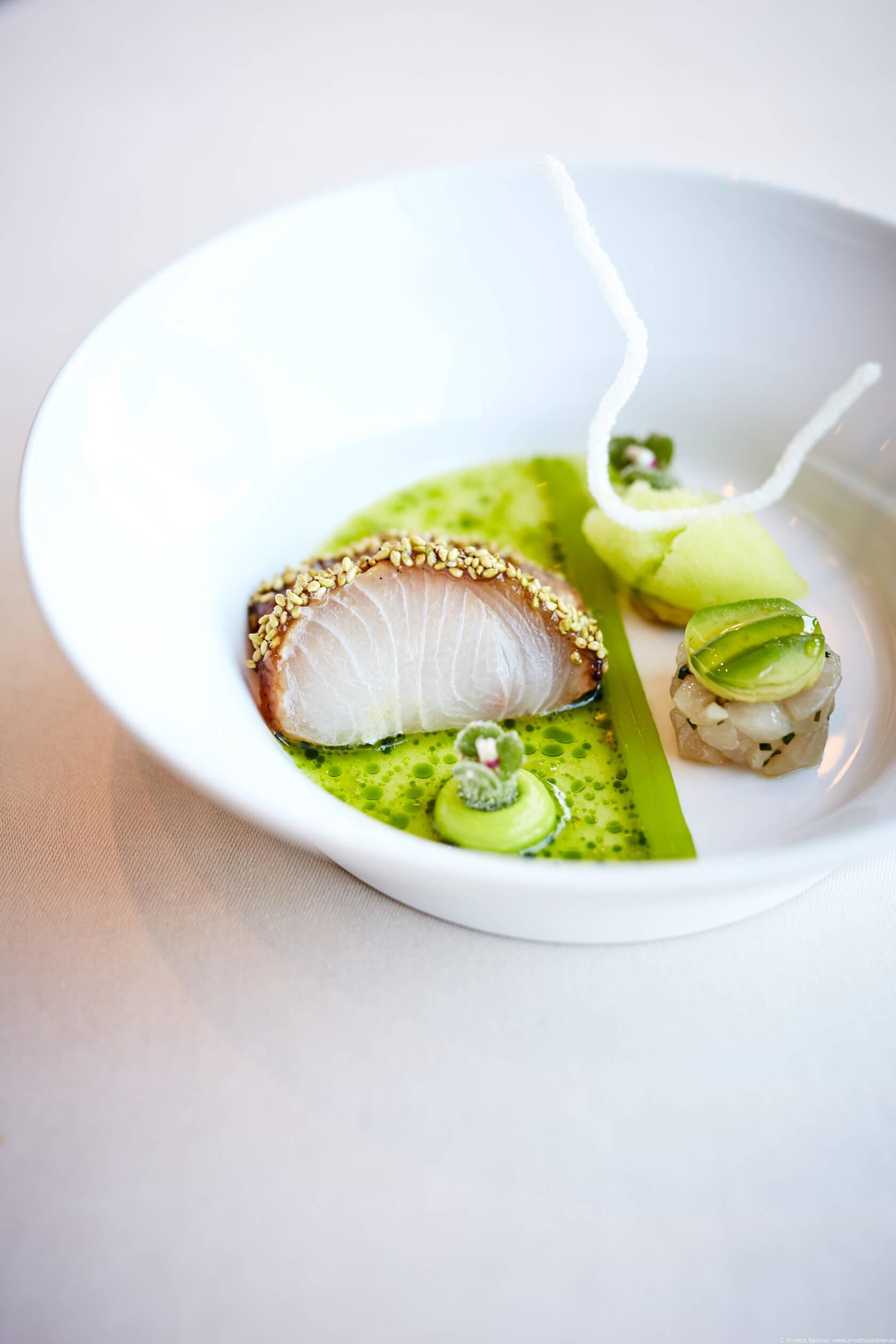 Geflämmter Hamachi Wasabi, Avocado, Gurke, Gourmet Restaurant Olivo, Stuttgart, Anton Gschwendtner