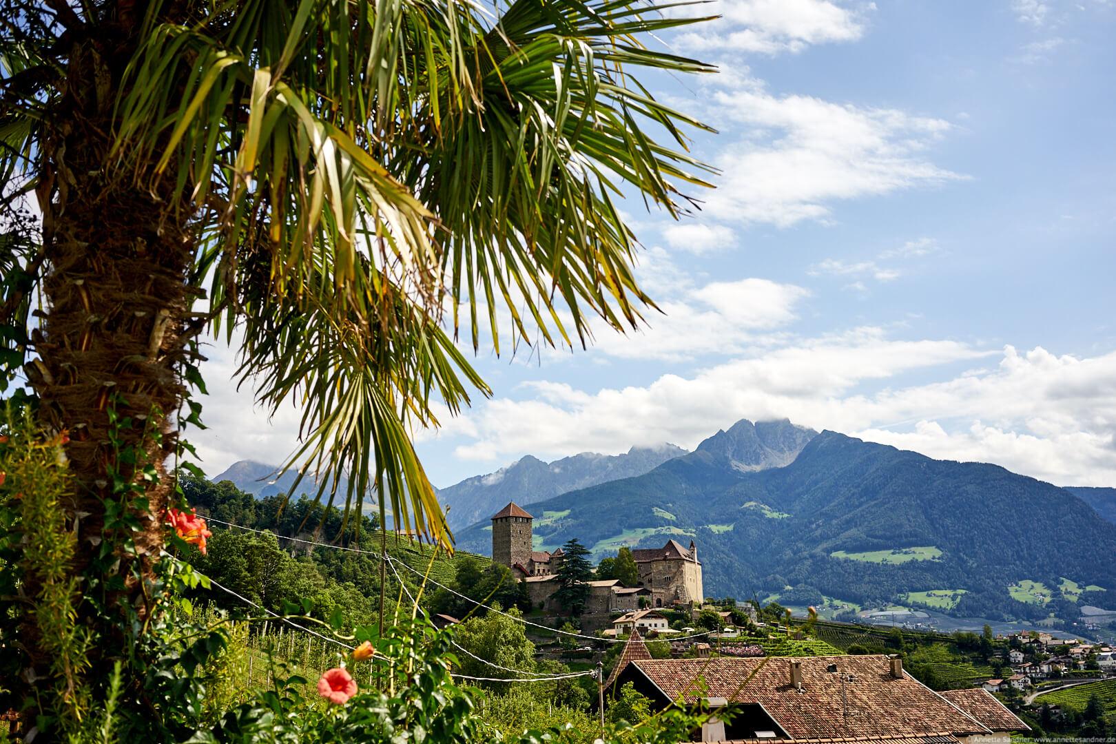 Blick vom Hotel Kronsbühel, Dorf Tirol, Meran, Südtirol