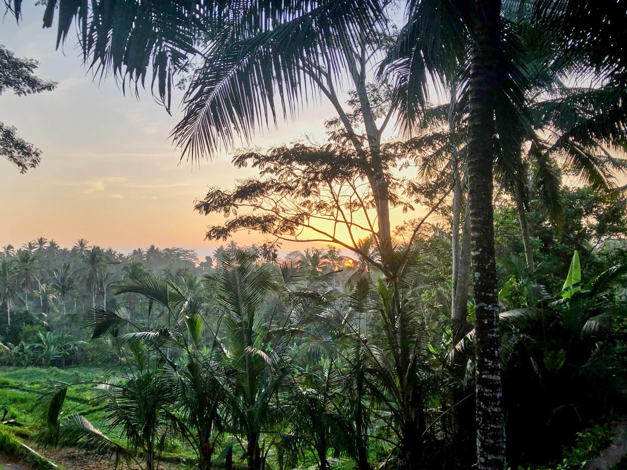 15,5 unvergessliche Genussmomente auf Bali, die du auch erleben solltest
