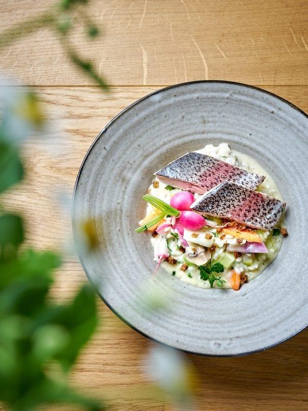 Das Kulinariat Ostermenü